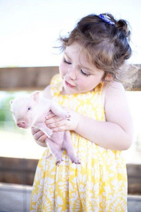 Положительный характер детей в год свиньи
